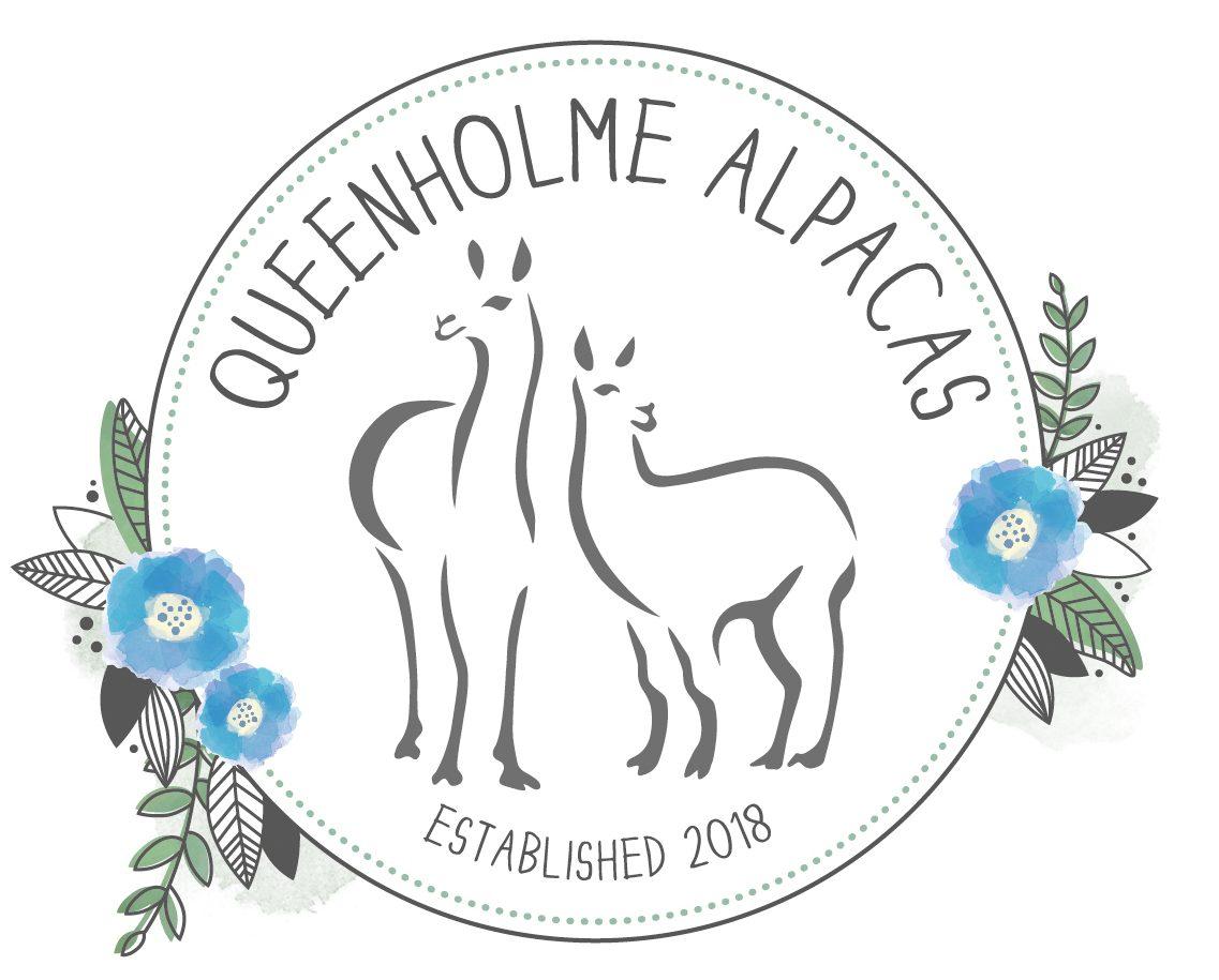 Queenholme Alpacas